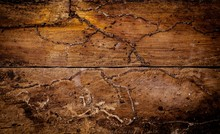 Wood With Termite Background