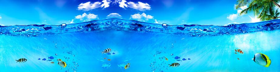 Fototapeta na wymiar Deniz ve Balıklar
