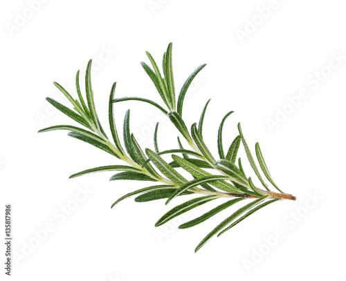 Poster Aromatische Rosemary isolated on white background, Top view.