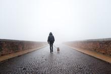 Donna Con Cane Che Cammina In Una Giornata Nebbiosa