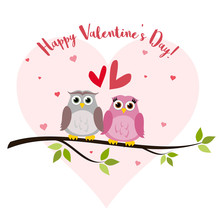 Valentine's Day Card With Cute Owls Vector
