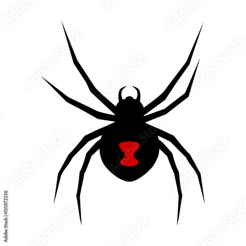 Fotografija  Black widow spider with red marking flat vector icon for apps and websites