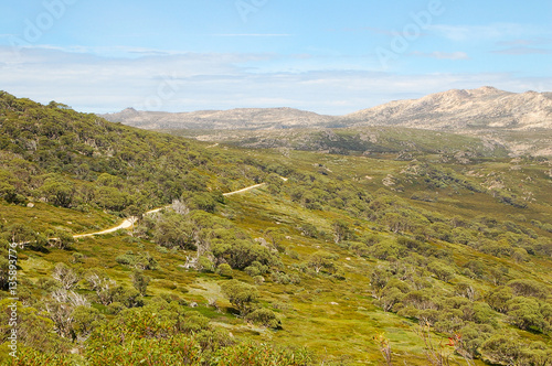 Fotografie, Obraz  Walking track at Charlotte pass in the Snowy Mountains of New South Wales, Austr