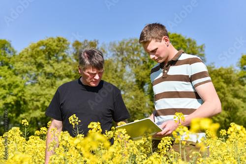 Foto  Landwirtschaftliche Ausbildung, Azubi und Meister im Rapsfeld