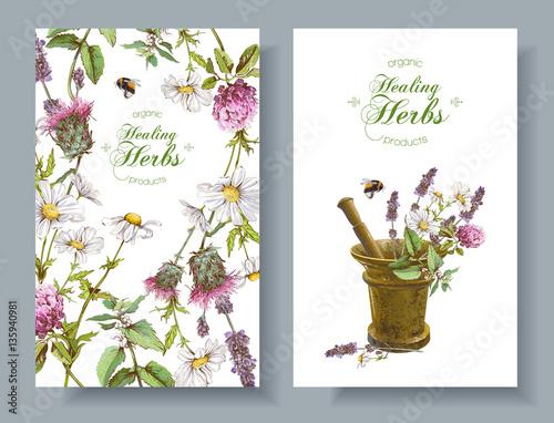 Fotografie, Obraz  Vector herbal banners