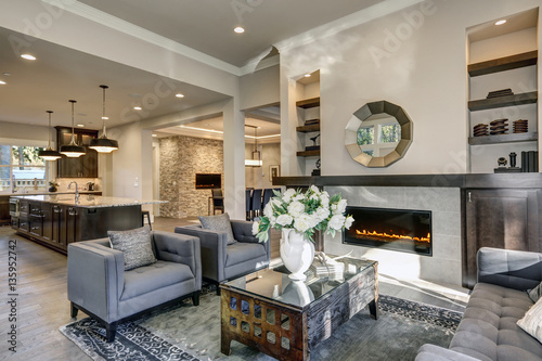 Fotografia, Obraz  Chic living room filled with built-in fireplace
