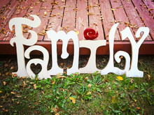 The Word Family Cut Out Of Wooden Letters And Painted White