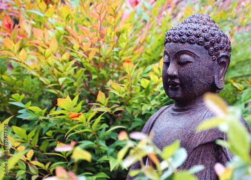 Buddha sculpture in garden