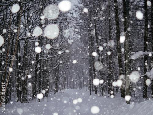 大雪の日 Poster