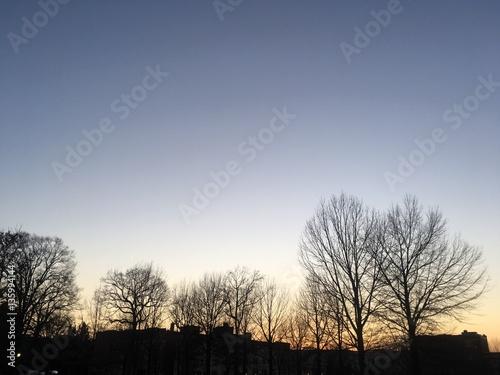 Photo  sunset twilight in winter
