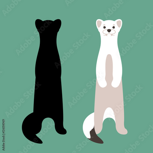 Photo  weasel vector illustration style Flat set silhouette
