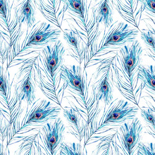 Watercolor Seamless Pattern With Peacock Feathers