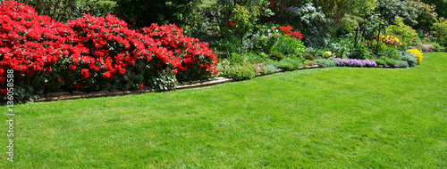 Plakat piękny ogród z azalią