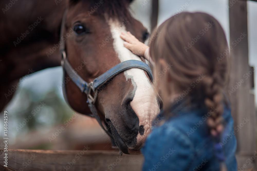 Fototapety, obrazy: Cute girl feeding her horse in paddock