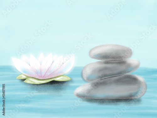 Fototapety, obrazy: Hand drawn colorful colorful water-lily and stones, illustration by pencil