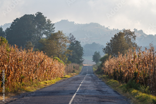 Poster Blanc Road leading to the lake Atitlan in the evening light, Guatemala