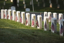 Grave Markers With Flags At Ar...