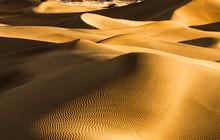 Sand Dune Breasts