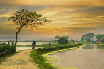 Village road of Bangladesh during sunset