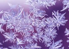 Purple Frost Pattern On The Glass