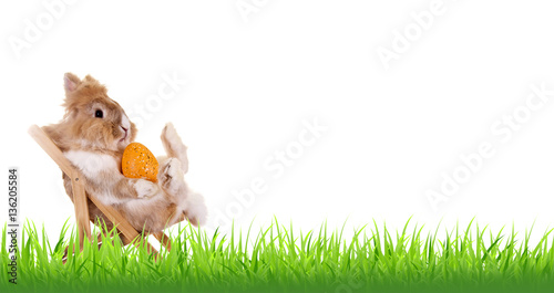 Ostermotiv: Banner mit Gras und Kaninchen im Liegestuhl