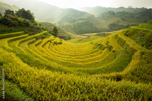 Poster Rijstvelden Curve Rice field on terrace