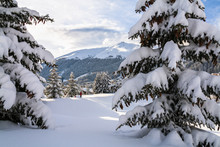 Davos During Winter, Switzerla...