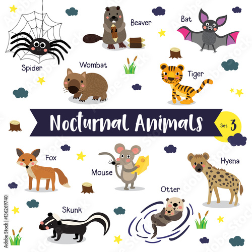 Nocturnal Animals cartoon on white background with animal ...