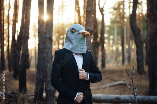 Fotografie, Obraz Weird businessman wearing a bird rubber mask in the autumn sunset forest