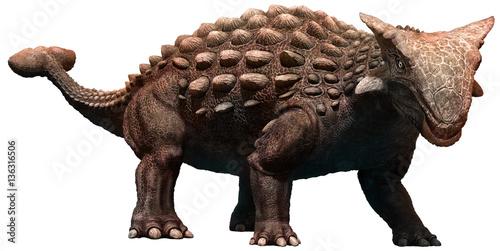 Photo  Ankylosaurus