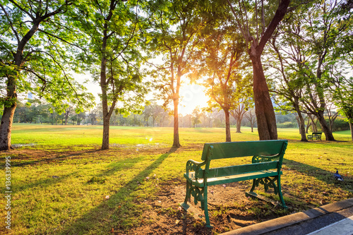 Photographie Morning beautiful park scene bench in public park with green gra