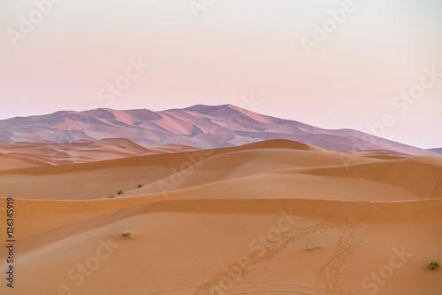 Foto op Canvas Droogte sand desert
