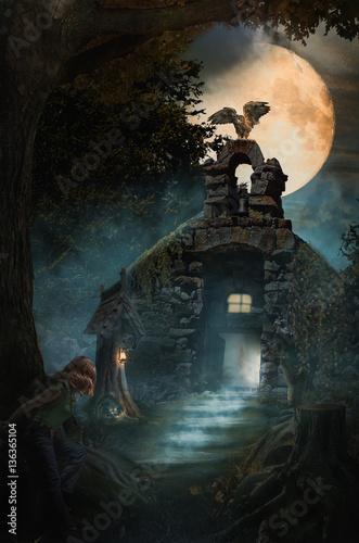 Fototapeta Fantastyczny zamek