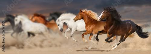 Photo  Horse herd run gallop in desert dust against sunset storm sky