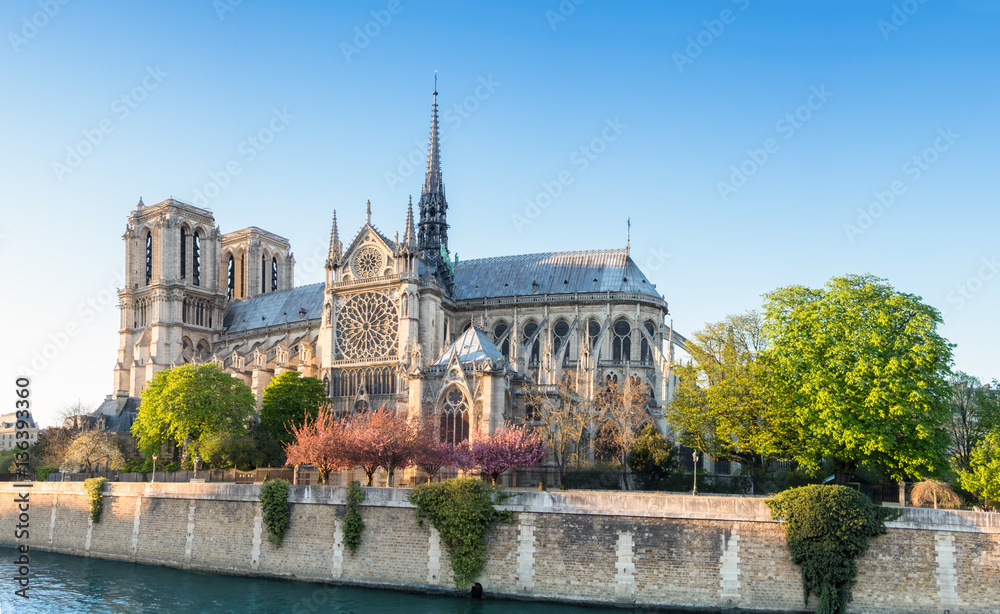 Fototapety, obrazy: Notre Dame Cathedral in Paris on a bright afternoon in Spring