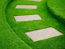 Artificial Green Grass Walk Wa...