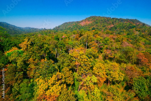 Poster de jardin Parc Naturel Aerial view of autumn forest