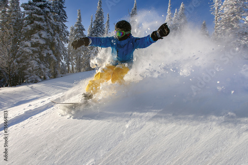 Stampa su Tela  Snowboarder doing a toe side carve