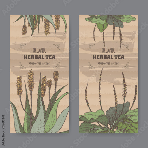 Fotografia, Obraz  Two color vintage labels for aloe and plantain herbal tea.