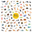 set a hundred animals on the planet