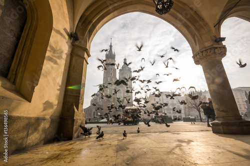 Fototapeta Beautiful market square with birds, Krakow, Poland obraz