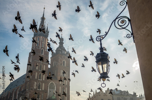 Fototapeta Church on Krakow's market square with birds, Poland obraz
