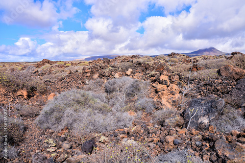 Foto op Canvas Lavendel Landscape in Tropical Volcanic Canary Islands Spain