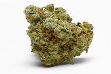 Close Up Of Jack Herrer Medical Marijuana Buds