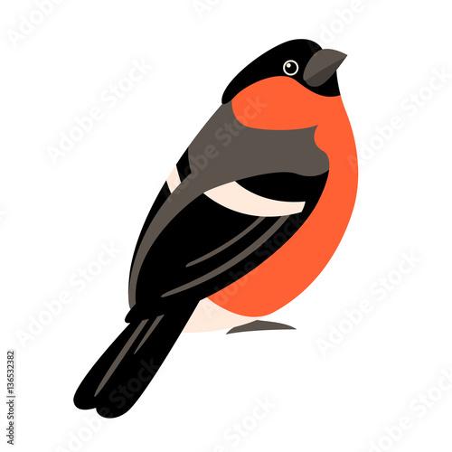 Stampa su Tela bullfinch vector illustration style Flat
