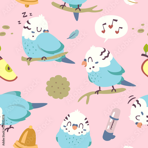 Fototapeta vector cartoon budgie parrot set