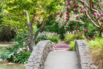 Fototapeta Ogrody Spring in botanic garden