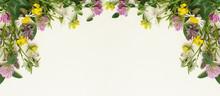 Wild Flowers Frame