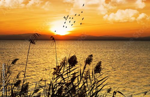 Foto op Aluminium Oranje amanecer sobre el lago natural