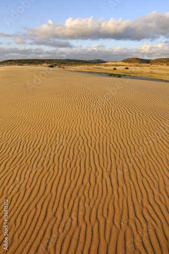 Poster de jardin Desert de sable flache Sanddünen am Strand von Carrapateira, Algarve, Portugal